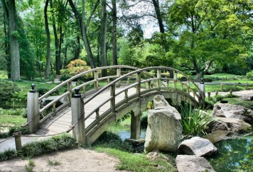 bridge-53769